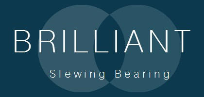Brilliant Slewing Bearing Services